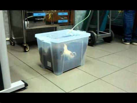 Diy-Pet-Oxygen-Box