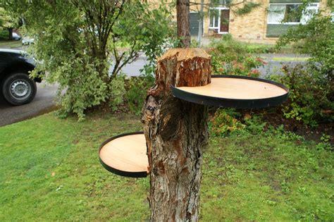 Diy-Pine-Stump-Table