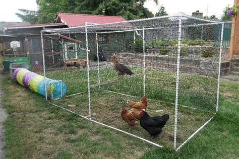 Diy-Pvc-Chicken-Run