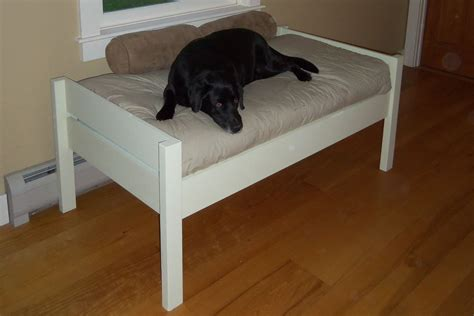 Diy-Raised-Dog-Bed-Plans
