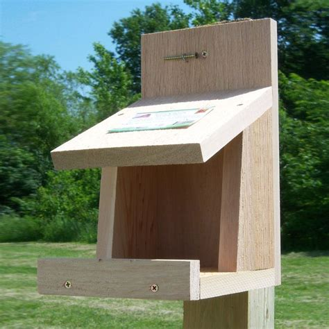 Diy-Robin-Bird-House-Plans