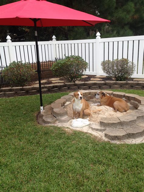 Diy-Sandbox-For-Dogs