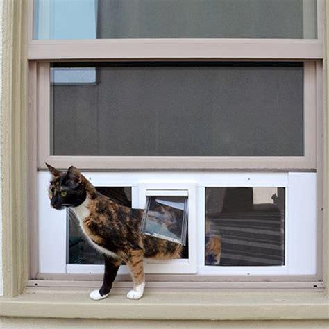 Diy-Sash-Window-Cat-Door