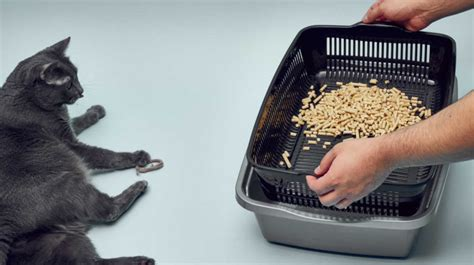 Diy-Sifting-Litter-Box-For-Pine-Pellets