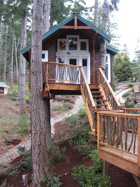 Diy-Simple-Treehouse-Pine-Tree
