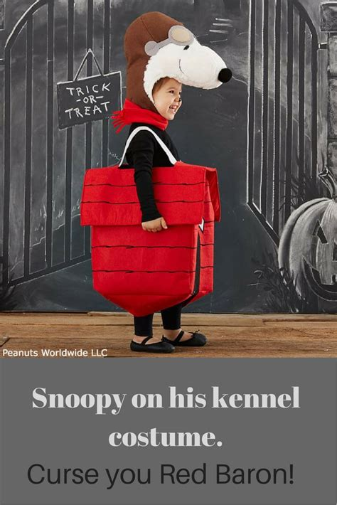 Diy-Snoopy-Dog-House-Costume