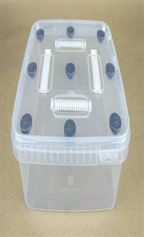 Diy-Substrate-For-Mushroom-Box