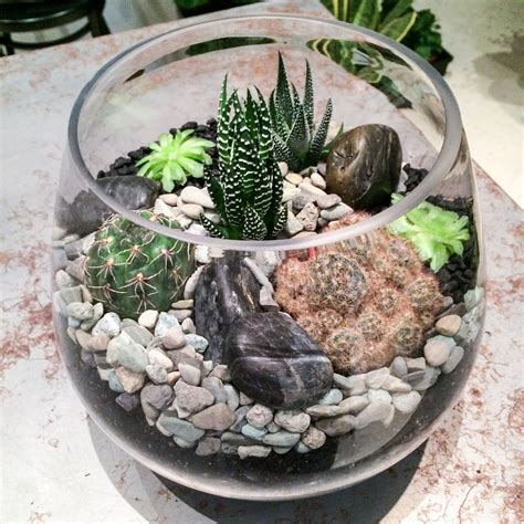 Diy-Succulent-Terrarium-Workshop
