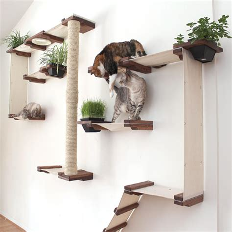 Diy-Wall-Mounted-Cat-Shelves