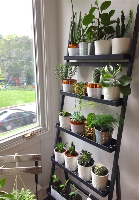 Diy-Wall-Shelves-For-Plants