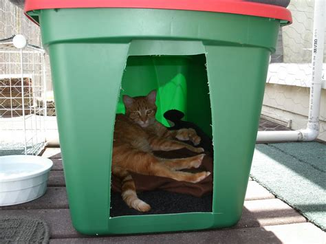 Diy-Winter-Cat-Door