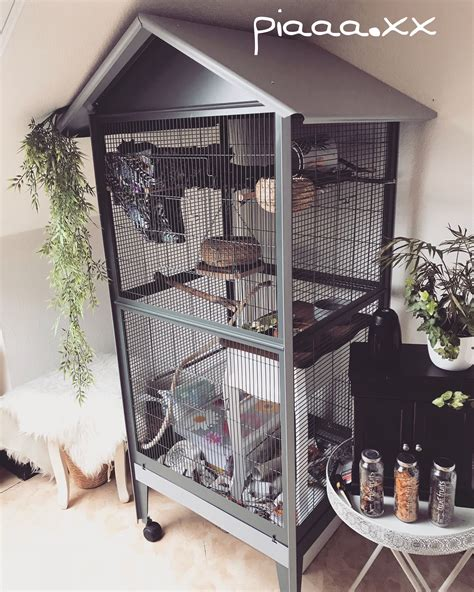 Diy-Wood-Rat-Cage
