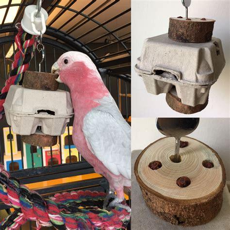 Diy-Wooden-Bird-Toys