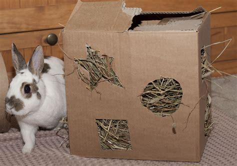 Diy-Wooden-Rabbit-Toys
