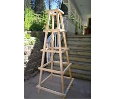 Best Diy garden obelisks pyramids