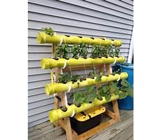 Best Diy hydroponics plans.aspx