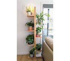 Best Diy plant shelf.aspx