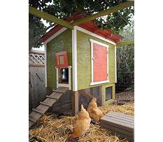 Best Diy urban chicken coop plans