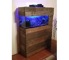 Best Diy wood fish tank.aspx