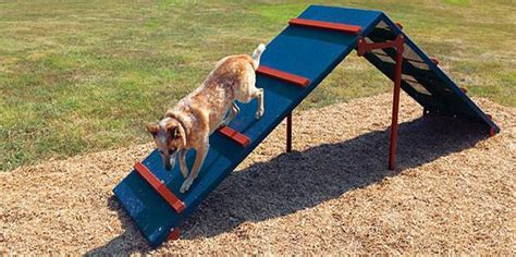 Dog Agility A Frame Diy Swing