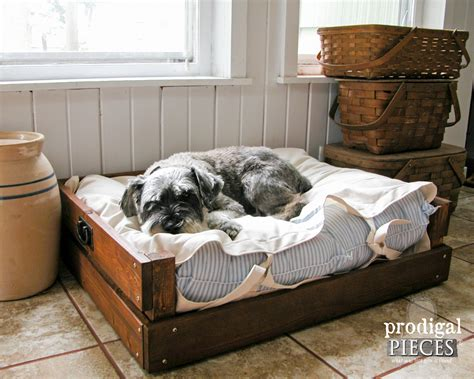Dog Bed Diy Plans