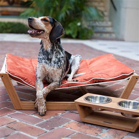 Dog Bed Hammock DIY