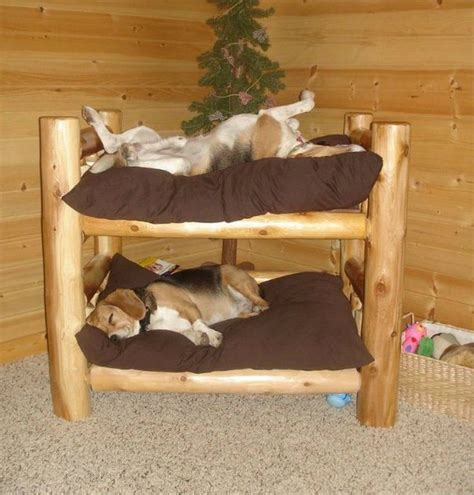 Dog Bunk Bed Design