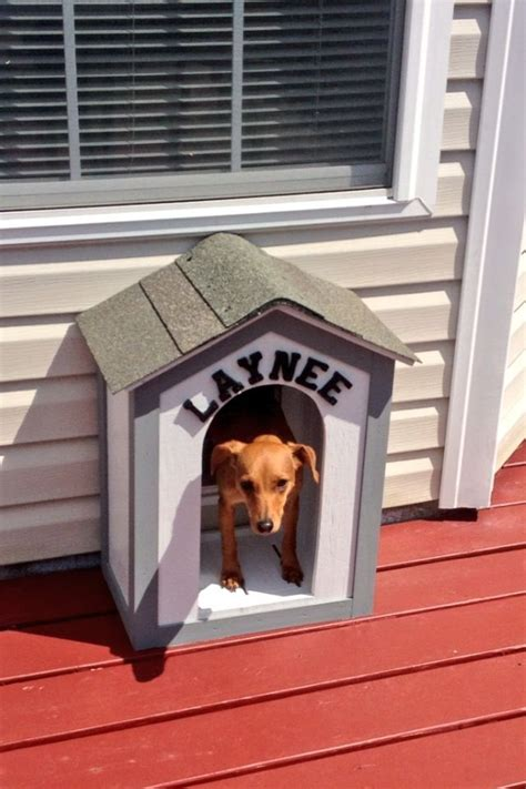 Dog House Door Diy