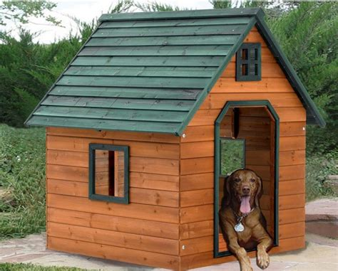 Dog House Plans For Extra Largwe Dos