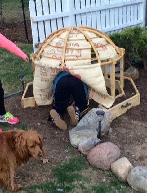 Dog Hut Diy
