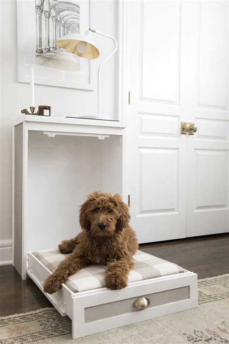 Dog Murphy Bed Diy Construction