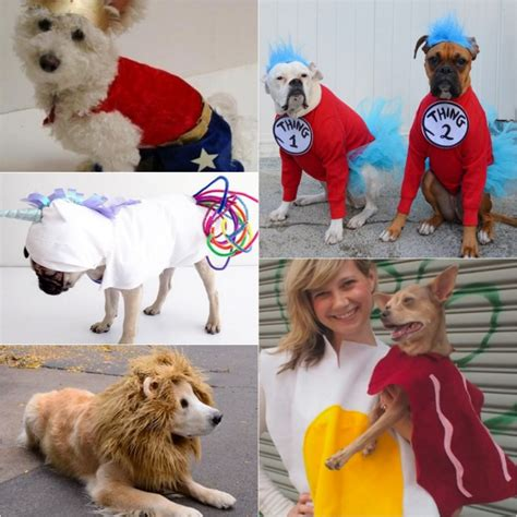 Dog-Costume-Ideas-Diy