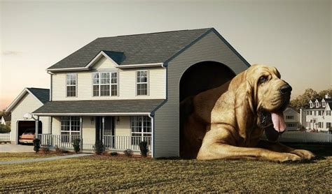 Dog-House-Plans-For-Great-Danes