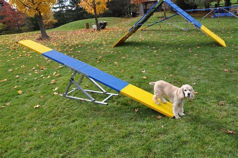 Dog-Park-Equipment-Diy-Seesaw