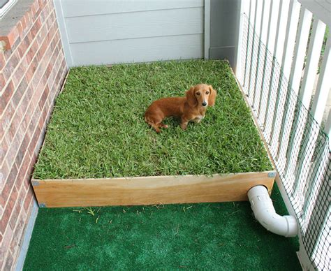 Dog-Potty-Grass-Box-Diy