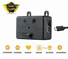 Best Dog barking deterrents that work