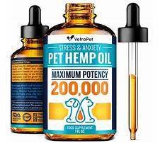 Best Dog crate training at night.aspx