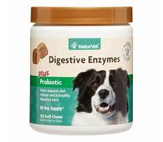 Best Dog enzyme supplementation diet