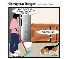 Best Dog obedience training classes cost.aspx
