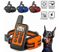 Best Dog shocker for training.aspx