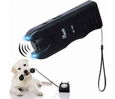 Best Dog stop barking device