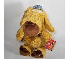 Best Dog train conductor