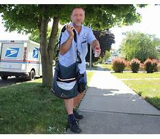 Best Dog train driver