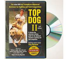 Best Dog train dvd