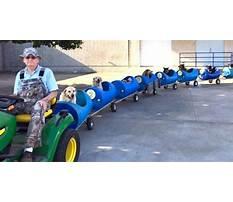 Best Dog train eugene bostick
