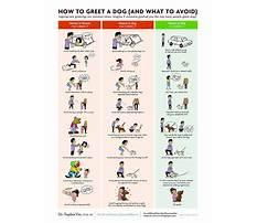 Best Dog train pdf