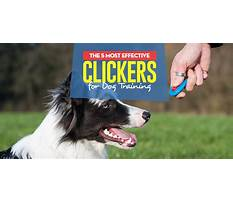Best Dog training clicker method