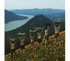 Best Dog training columbia county oregon