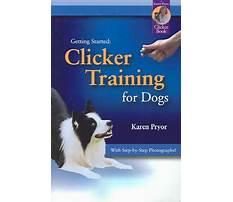 Best Dog training consistency family karen pryor.aspx