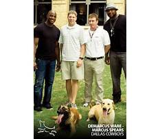 Best Dog training dfw area
